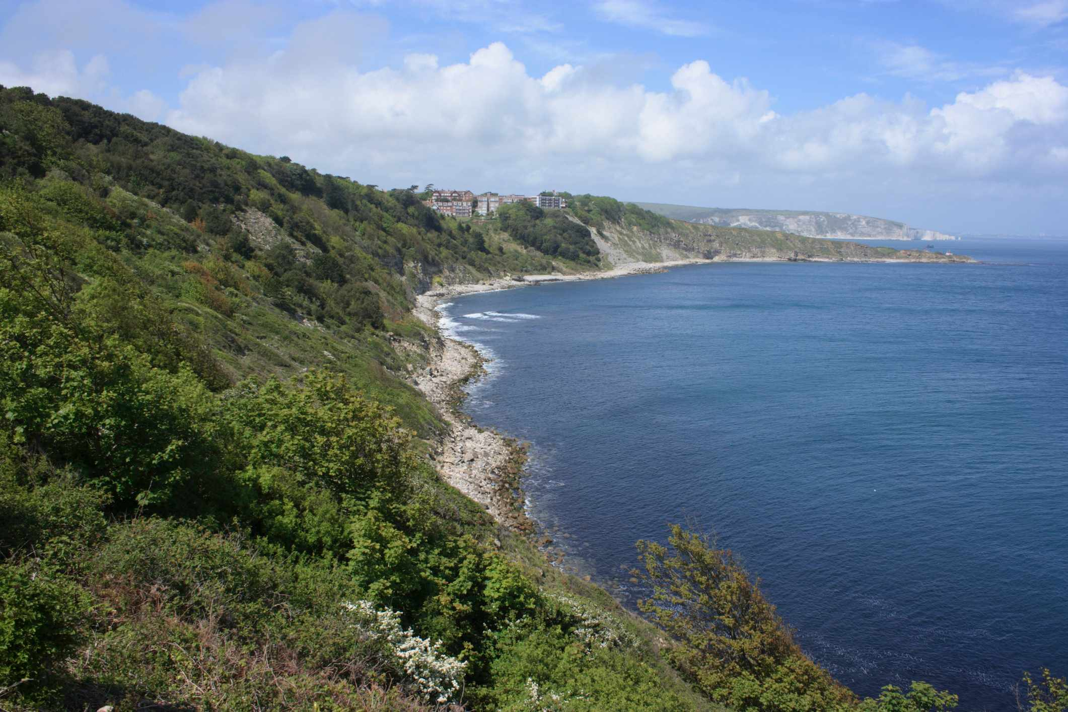 Durlston Bay, Dorset