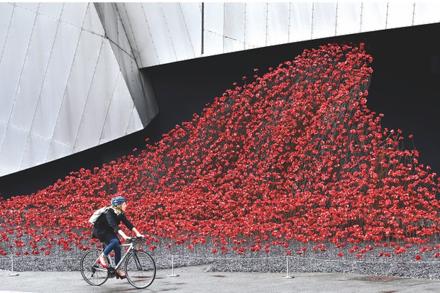 Poppies Wave at IWM North