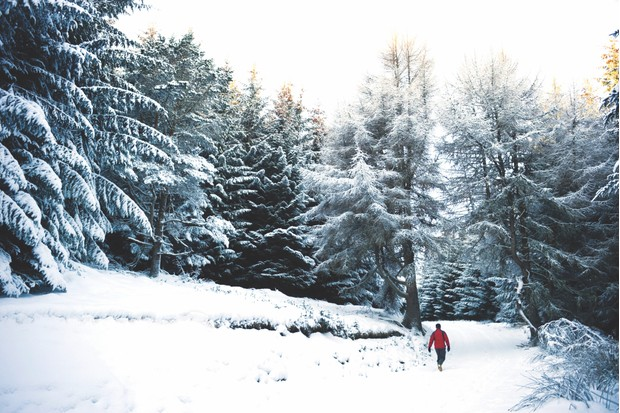 Scottish glen in winter