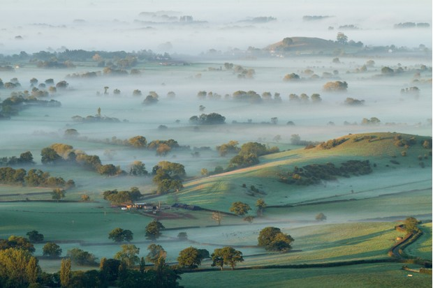Dawn mist on Somerset Levels