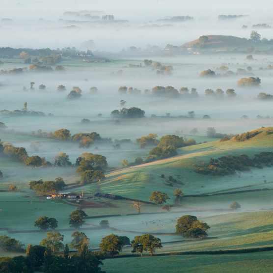 Dawn mist on Somerset Levels