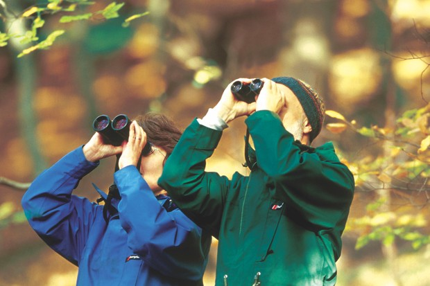 Birdwatching ©Getty