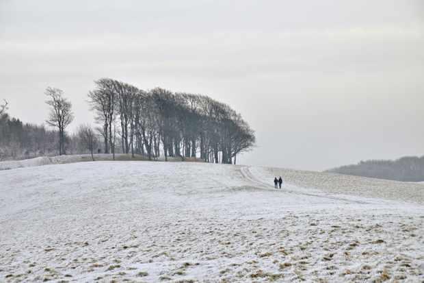 Chanctonbury Ring, West Sussex ©Alamy