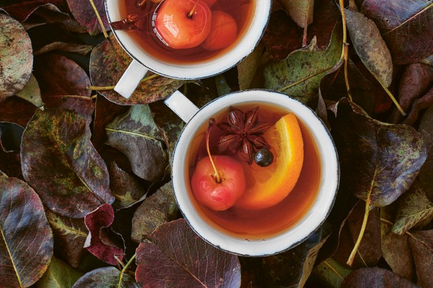 The Orchard cook_gin wassail