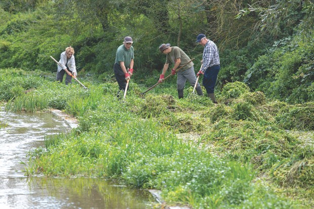Volunteers for Herts and Middlesex Wildlife Trust maintaining river bed at Lemsford Springs © Katie Davey
