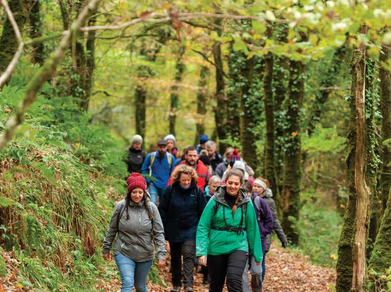 Walking groups: how to find and join a walking group