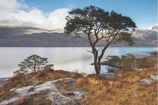 Loch Maree and Slioch, North West Highlands, Scotland