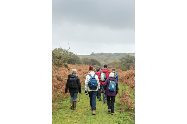 A group of ramblers explore the Cornish countryside
