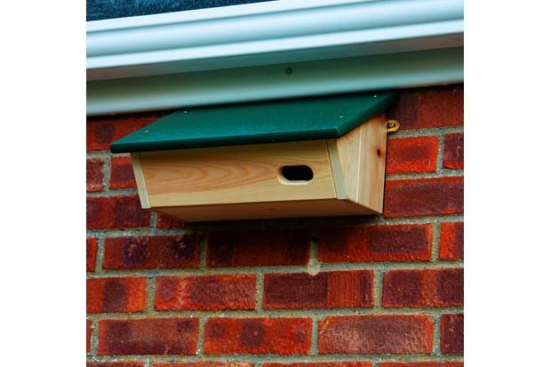 Swift nestbox