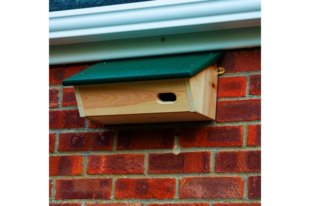 Swift nestbox