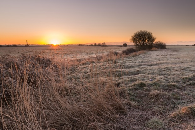 Farmland at sunset
