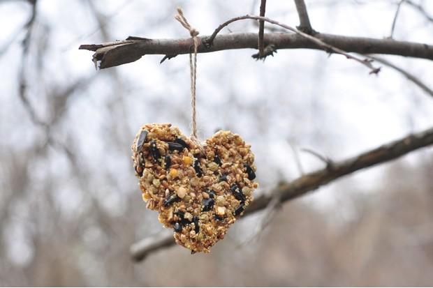 Bird feeder (Getty)