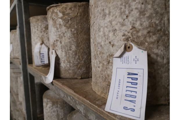 Cheese-on-shelf