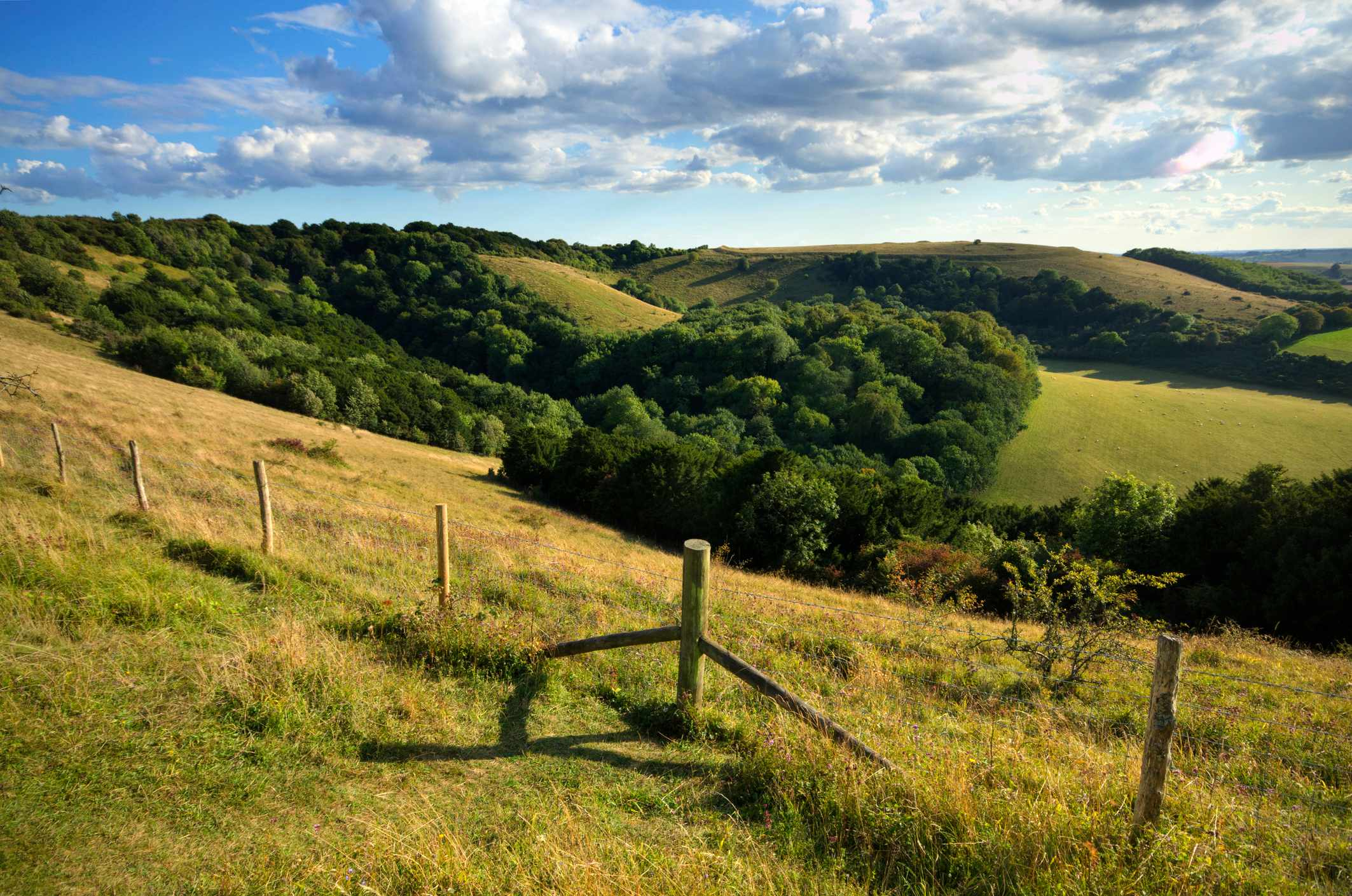 South Downs National Park in England, with Old Winchester hill in the distance ©Getty