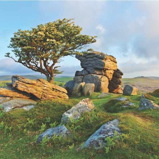 Saddle Tor on Dartmoor