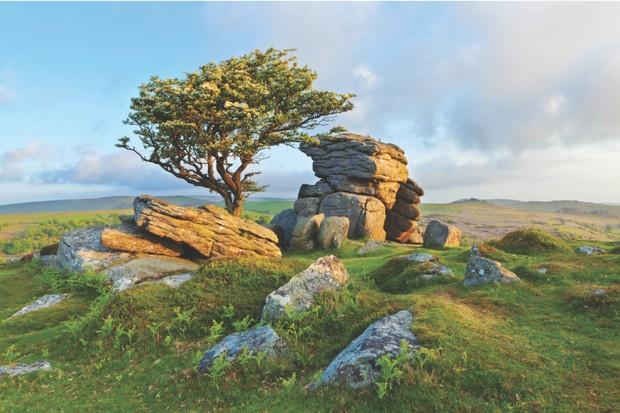 Saddle Tor on Dartmoor