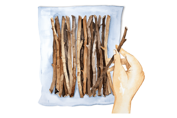 How to make a twig bowl