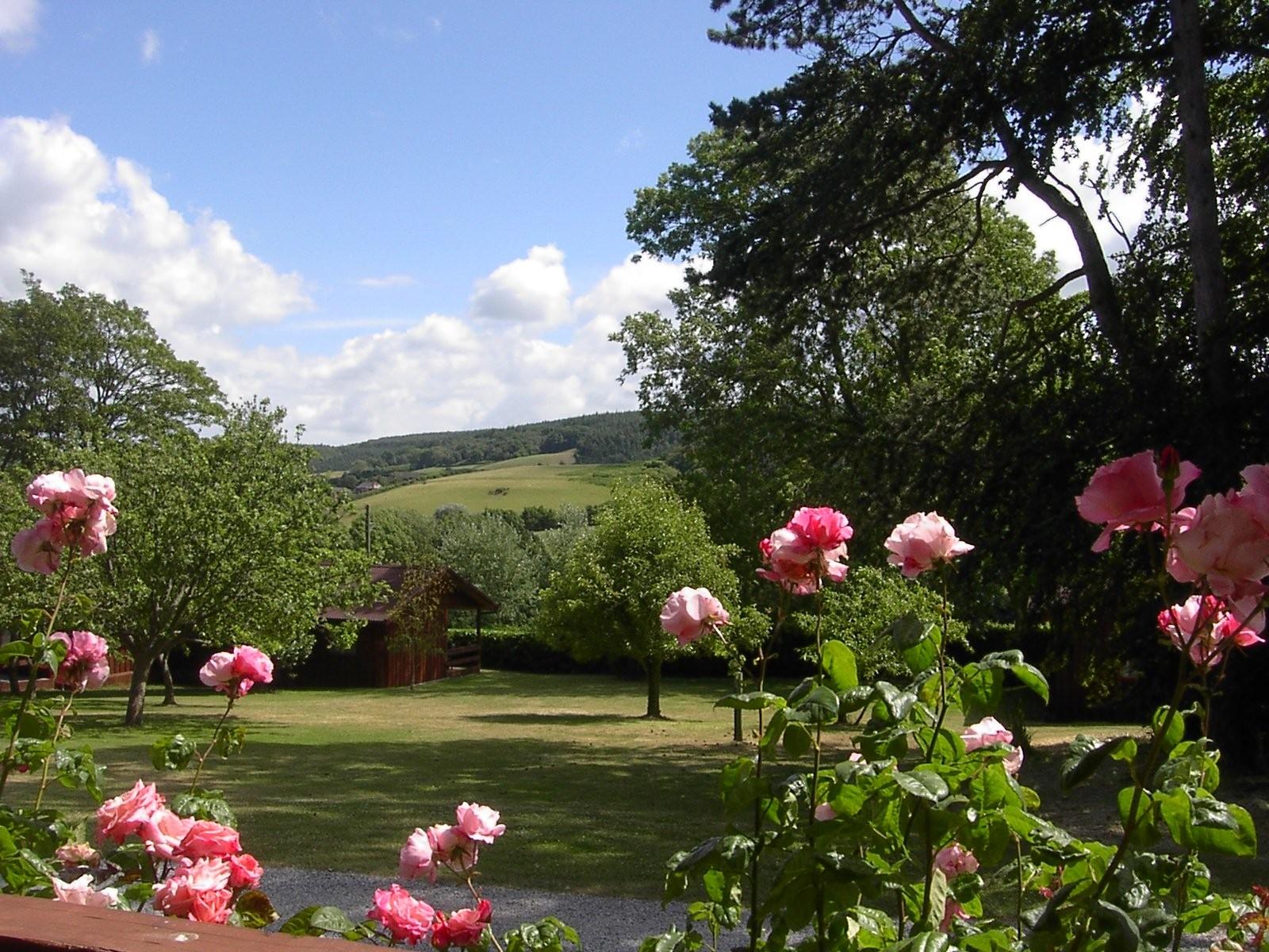 Woodcombe Lodges - Andrew Hanson