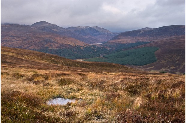 Above Glen Lui, Scotland
