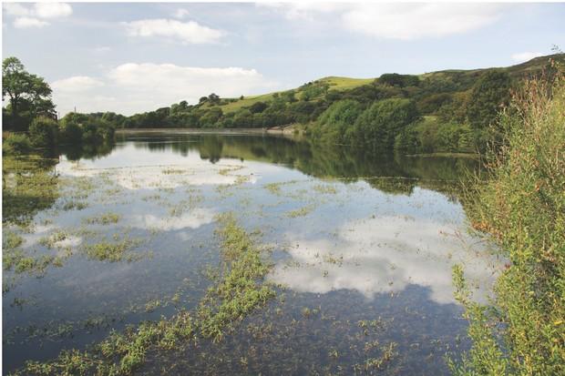 Bottom's Reservoir, Cheshire