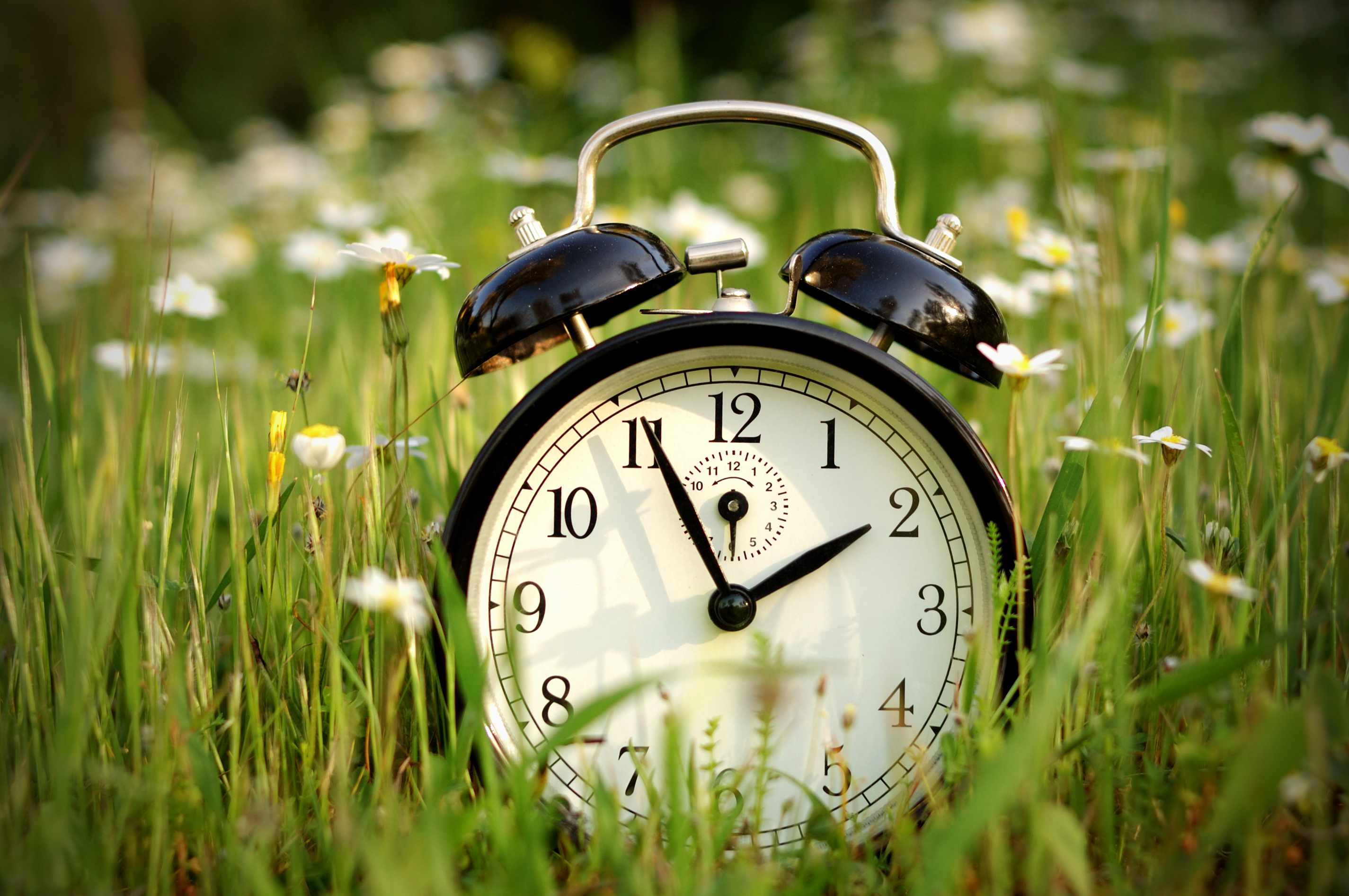 Changing clocks in spring