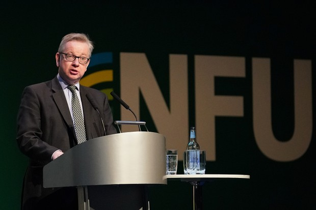 British Food and Rural Affairs Secretary Michael Gove addresses delegates at the National Farmers Union annual conference at the International Conference Centre on February 20, 2018 in Birmingham (Getty)