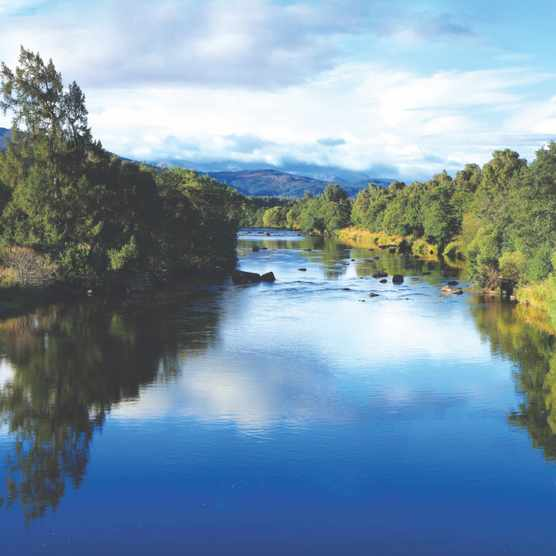 The River Spey near Boat of Garten, Cairngorms