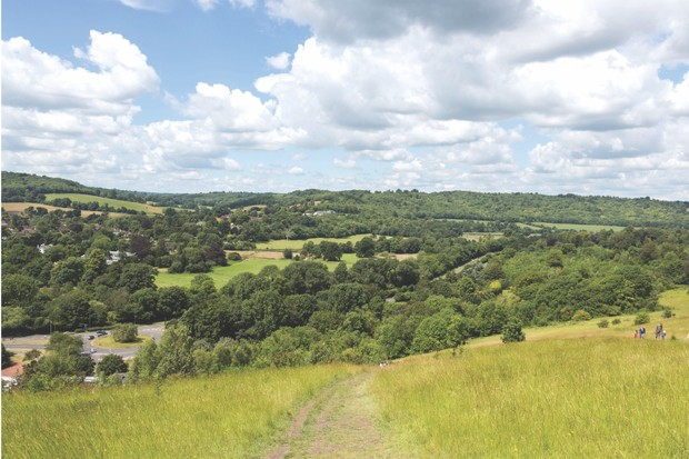 Box Hill, Surrey