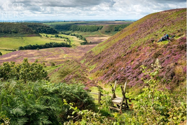 United Kingdom, England, Great Britain, North York Moors National Park, British Isles, North Yorkshire, Walkers sitting amongst the heather at The Hole of Horcum
