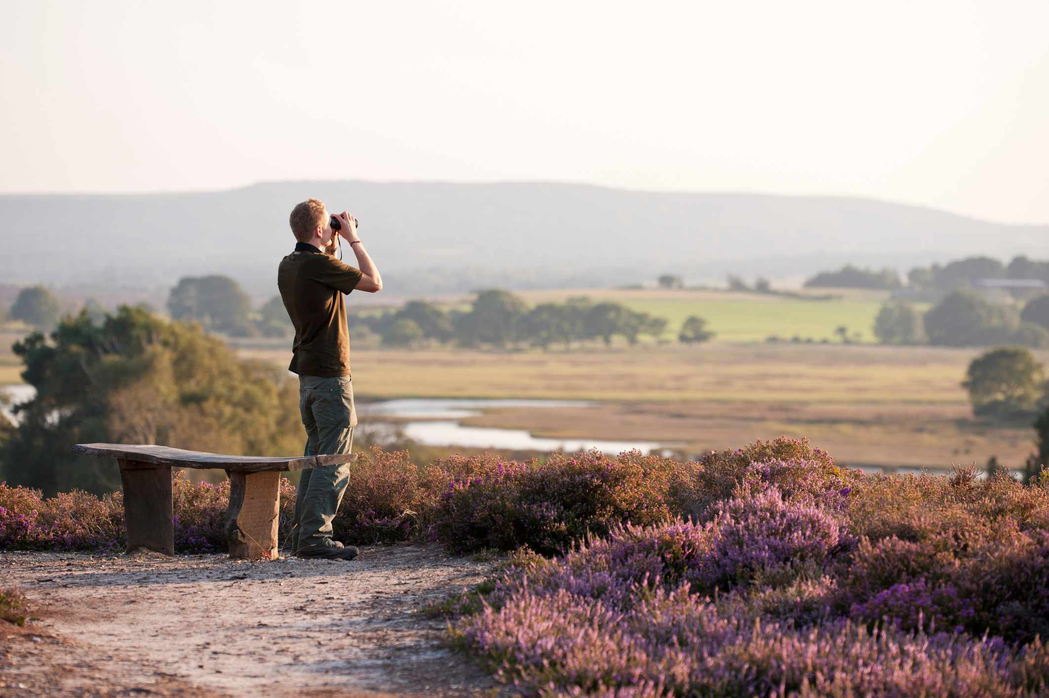 Birdwatching at Arne nature reserve in Dorset.