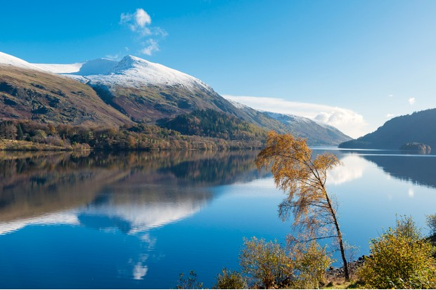 A snow topped Helvellyn mountain viewed from a clear Thirlmere water in Autumn time with a curved Autumnal tree.Taken November 2012.Lake District National park.