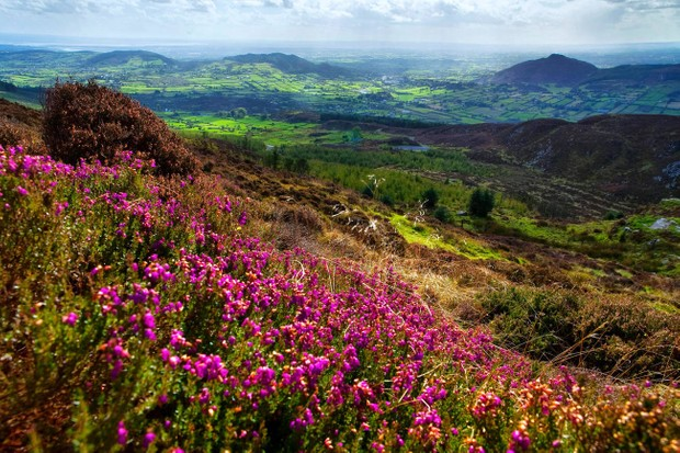 FFJJ5C View from Slieve Gullion Ring of Gullion South Armagh Northern Ireland