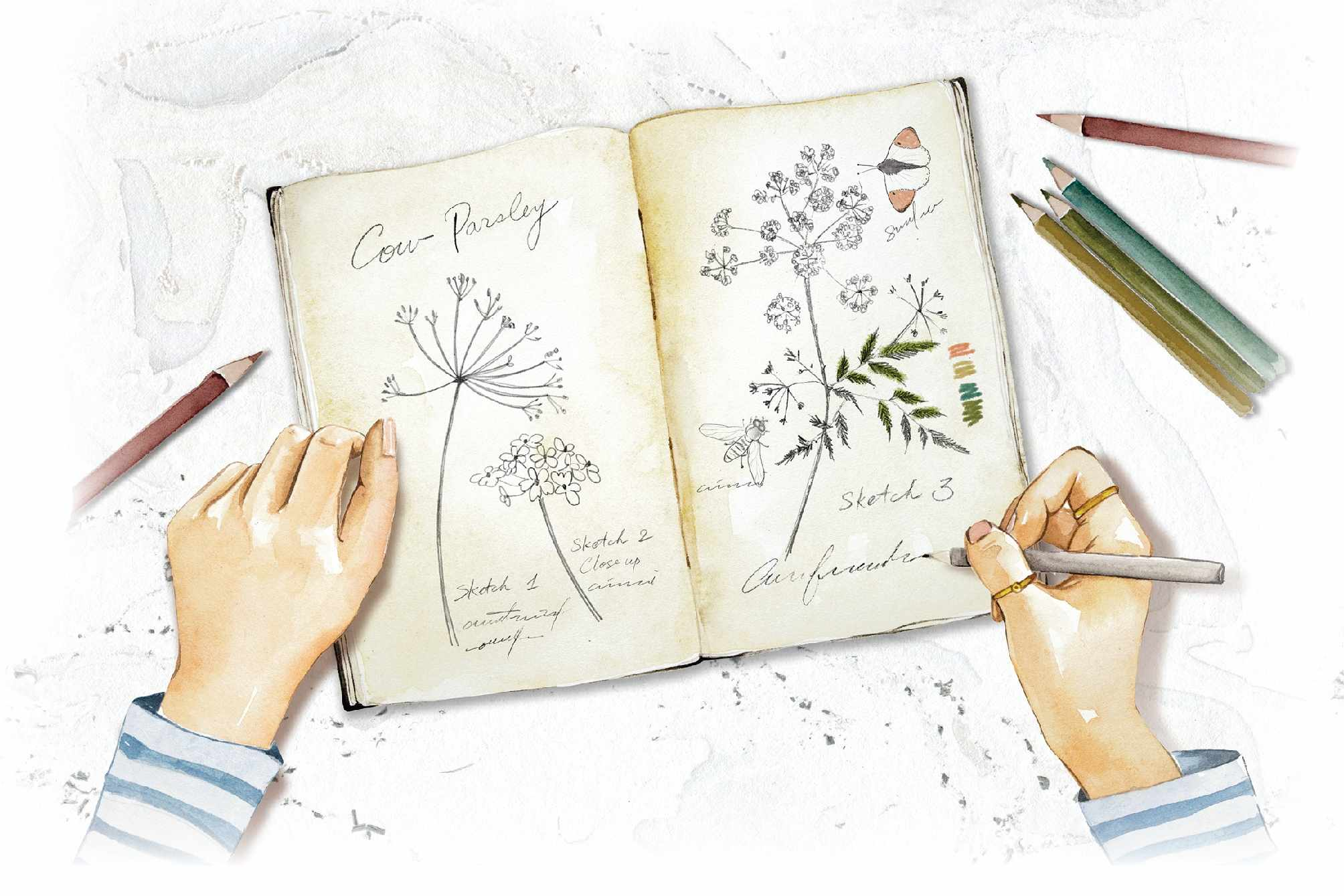 How to draw a flower ©Enya Todd