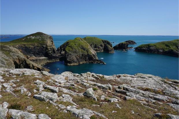 Ramsey Island, Wales
