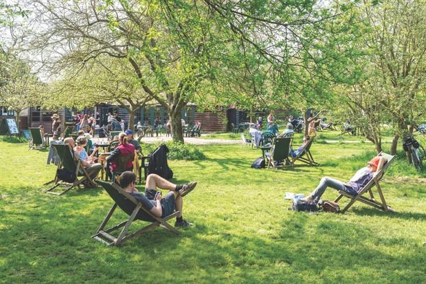 The Orchard Tea Garden, Cambridgeshire