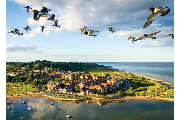August finalist for the BBC Countryfile Calendar competition 2020. 'Catchers in the Sky' by Richard Armstrong.