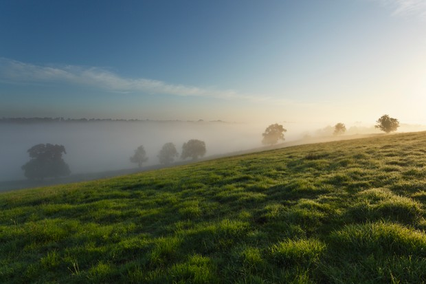 Mist on the Polden Hills, Somerset