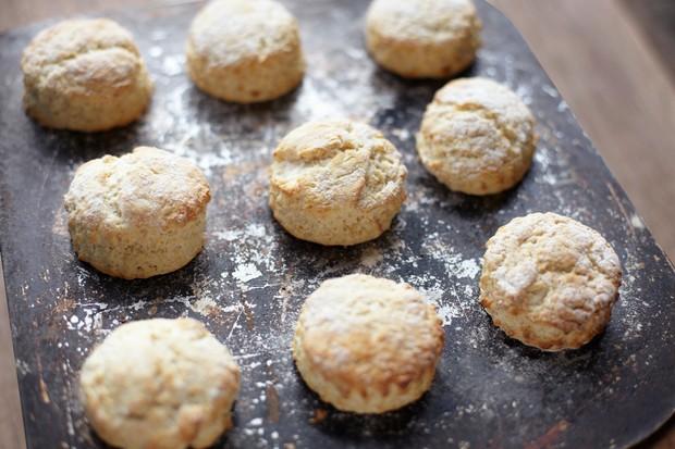 freshly-baked-scones