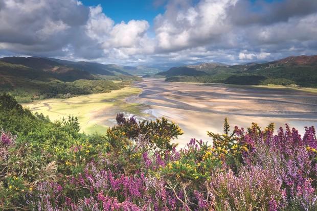 Mawddach Estuary, Wales
