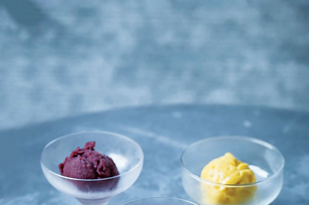 Pure fruit sorbet