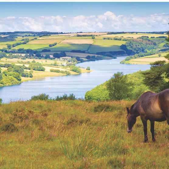 Wimbleball Lake, Somerset