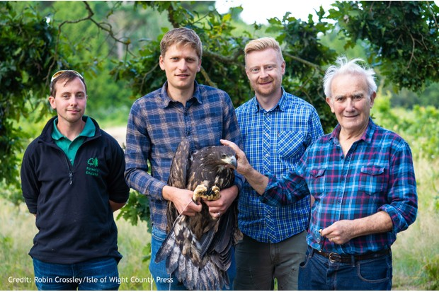 Thorness - White-tailed Eagle's being tagged in preparation for release on Wednesday morning. From left, Steve Eggerton-Read with Tim Mackrill, Ian Perks and Roy Dennis.
