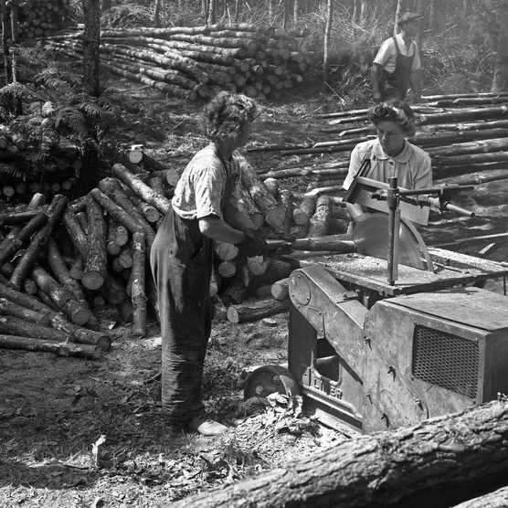 Women's Timber Corps, or Lumber Jills, working at Rendlesham Forest, Suffolk, 1945 (Photo by: Forestry Commission)