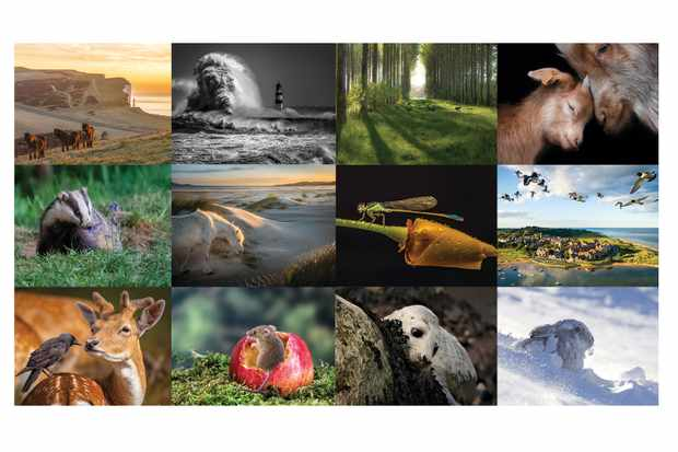 BBC Countryfile Calendar finalists 2020