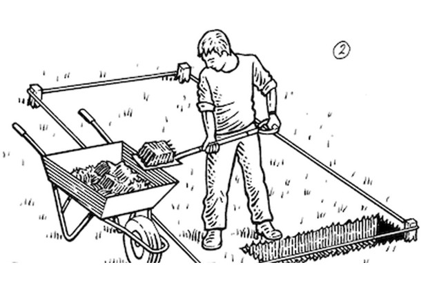 How to double dig a veg plot step 2