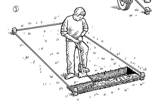 How to double dig a veg plot step 3