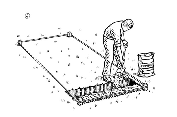 How to double dig a veg plot step 4
