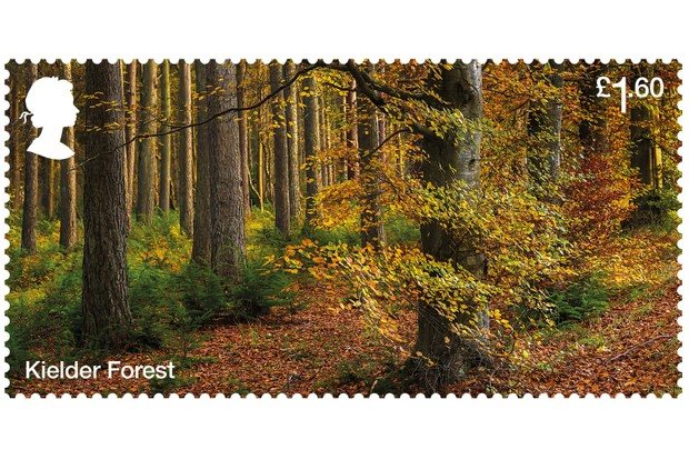 Kielder Forest Stamp (Photo via Forestry Commission)