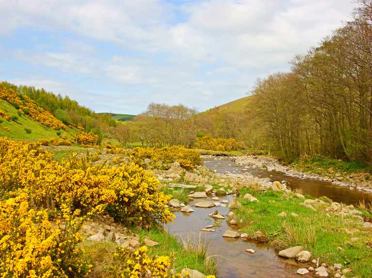 Day out: Harthope Valley, Northumberland