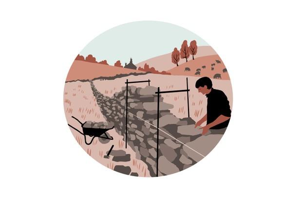Stone wall illustration by Lynn Hatzius